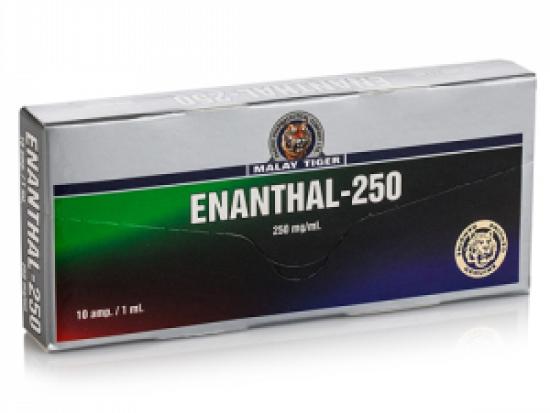 купить Enanthal-250 1 амп, 250 мг/мл