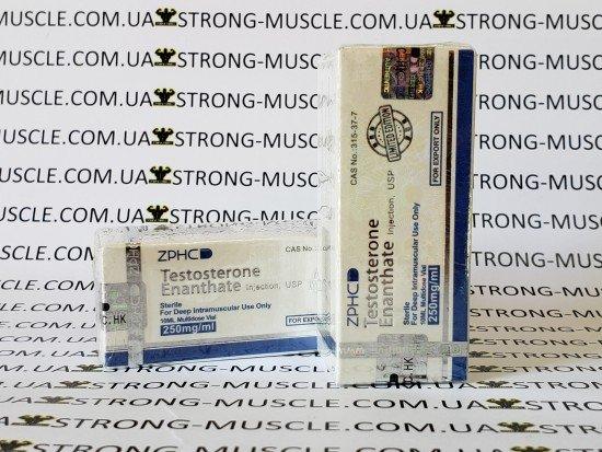 купить ZPHC Testosterone Enanthate, 10 мл, 250 мг/мл (Тестостерон Энантат) китайский