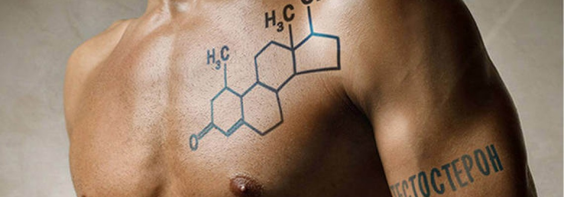 Как восстановить выработку тестостерона после курса